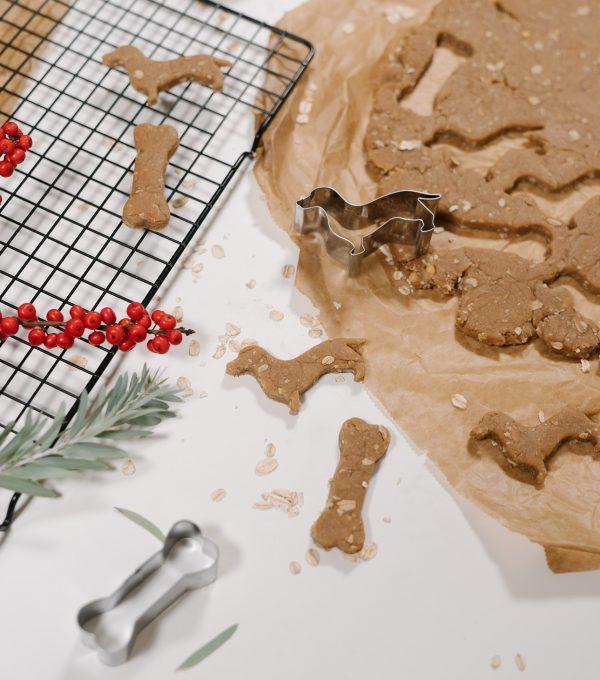Moin Liz DIY, nähen, nachhaltig, fair, handmade, Hundeplätzchen selber machen