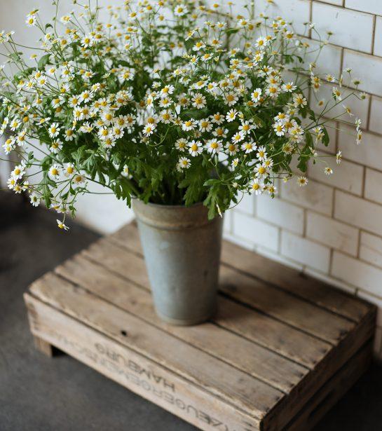 Moin Liz DIY nähen und Upcycling Refashion Blüten